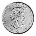 2008 (1918-) Canadian 25-Cent Poppy Armistice 90th Anniv Coloured Quarter Original Coin Roll