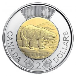 2019 Canadian $2 Polar Bear Toonie Coin (Brilliant Uncirculated)