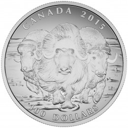 2015 Canadian $100 for $100 Muskox: Ancient Dweller of the High Arctic Fine Silver Coin