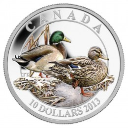 2013 Canadian $10 Ducks of Canada: Mallard - 1/2 oz Fine Silver Coloured Coin
