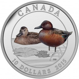 2015 Canadian $10 Ducks of Canada: Cinnamon Teal - 1/2 oz Fine Silver Coloured Coin