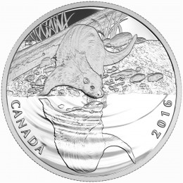 2016 Canadian $10 Reflections of Wildlife: Otter - 1/2 oz Fine Silver Coin