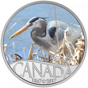 2017 Canadian $10 Celebrating Canada's 150th: Great Blue Heron - 1/2 oz Fine Silver Coin