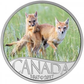 2017 Canadian $10 Celebrating Canada's 150th: Wild Swift Fox and Pups - 1/2 oz Fine Silver Coin