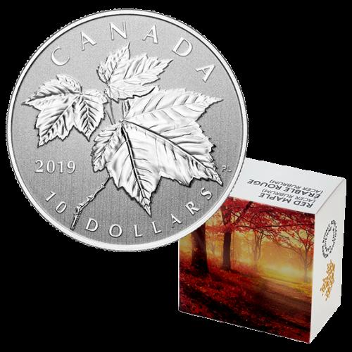 2019 Canadian $10 Maple Leaf - 1/2 oz Fine Silver Coin
