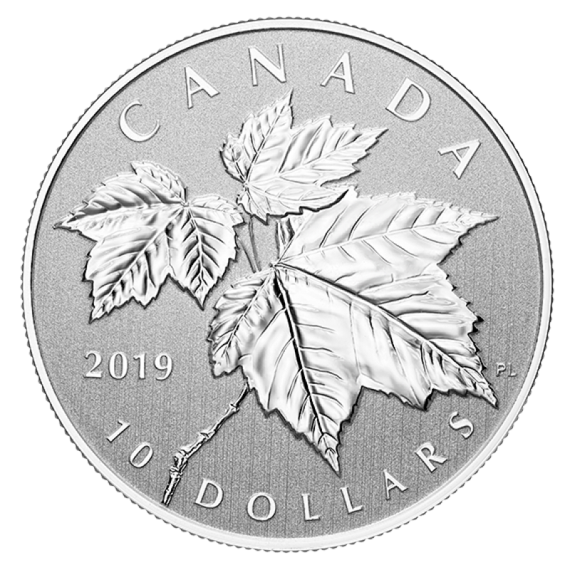 Canada 2018 $10 The Maple Leaf 99.99/% Pure Silver Specimen Coin