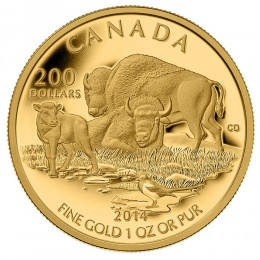 2014 Canadian $200 The Bison: At Home on The Plains - 1 oz Pure Gold Coin