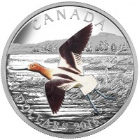 2016 Fine Silver 20 Dollar Coin - The Migratory Birds Convention: 100 Years of Protection - The American Avocet