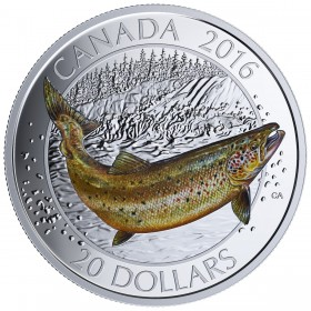 2016 Canadian $20 Big Fish Series: Atlantic Salmon 1 oz Fine Silver Coloured Coin