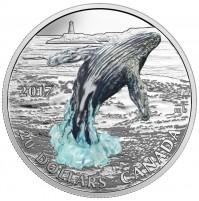 2017 Fine Silver 20 Dollar Coin - Breaching Whale