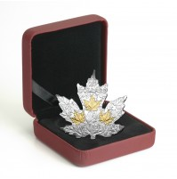 2017 Fine Silver 20 Dollar Coin - Gilded Silver Maple Leaf
