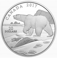 2017 Fine Silver 20 Dollar Coin - Nature's Impressions: Polar Bear