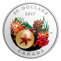 2017 Canadian $20 Under the Sea: Sea Star (Venetian Glass) - 1 oz Fine Silver Coin