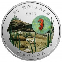 2017 Fine Silver 20 Dollar Coin - Under the Sea: Seahorse