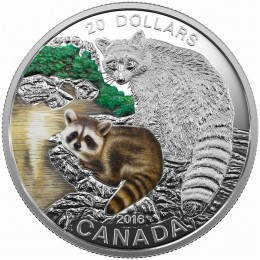 2016 Canadian $20 Baby Animals: Raccoon - 1 oz Fine Silver Coin