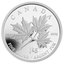 2011 Canadian $250 Maple Leaf Forever Fine Silver Kilo Coin
