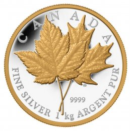 2013 Canadian $250 Maple Leaf Forever Fine Silver & Gold-plated Kilo Coin