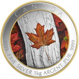 2016 Canadian $250 Maple Leaf Forever - Fine Silver & Gold-plated Kilo Coin