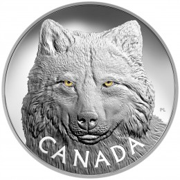 2017 Canadian $250 In the Eyes of the Timber Wolf - Fine Silver Kilo Coin