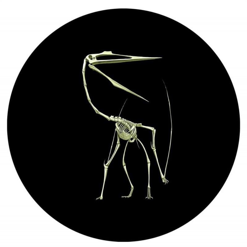 IN STOCK 2013 GLOW IN THE DARK Dinosaur Quetzalcoatlus Lakustai 25 CENT COIN