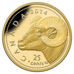 2014 Canada Pure Gold 25 Cent Coin - Rocky Mountain Bighorn Sheep