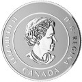 2016 Canadian $25 for $25 True North/Polar Bear Fine Silver Coloured Coin