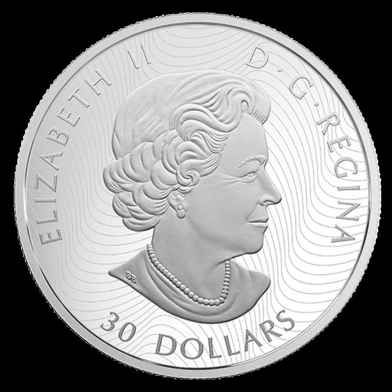 2018 Canadian 30 Dimensional Nature Polar Bears 2 Oz Fine Silver Coin