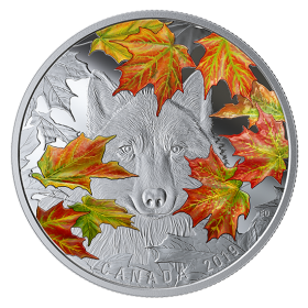 2019 Canadian $30 Wily Wolf - 2 oz Fine Silver Coloured Coin