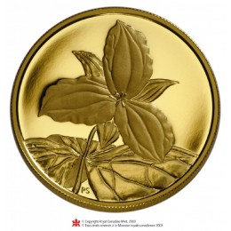 2003 Canada Pure Gold $350 Coin - Ontario White Trillium