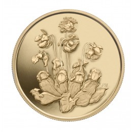 2009 Canadian $350 Provincial Flowers: Pitcher Plant 99.999% Pure Gold Coin