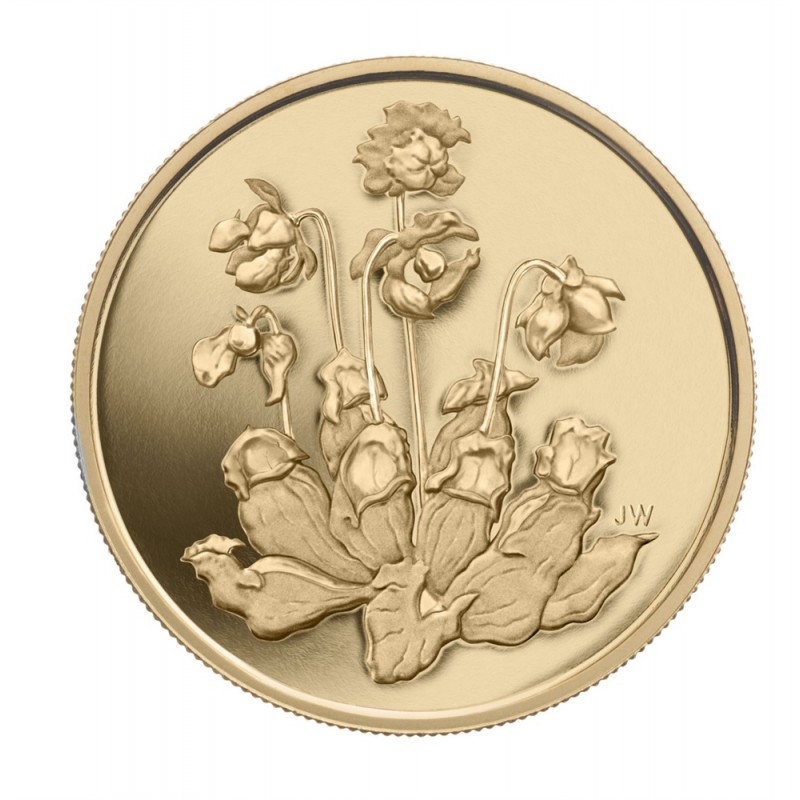 2009 Canadian 350 Provincial Flowers Pitcher Plant 99 999 Pure Gold Coin