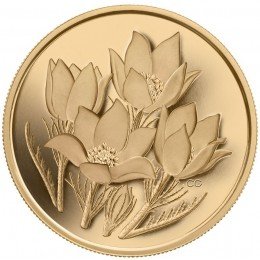 2010 Canadian $350 Provincial Flowers: Prairie Crocus 99.999% Pure Gold Coin