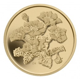 2011 Canadian $350 Provincial Flowers: Mountain Avens 99.999% Pure Gold Coin