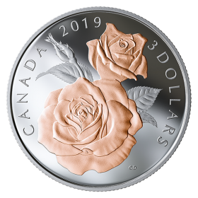2019 Canadian $3 Queen Elizabeth Rose Blossoms - Fine Silver & Gold-plated Coin