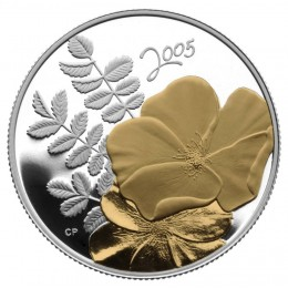 2005 Canadian 50-Cent Golden Rose Sterling Silver Gold-plated Coin