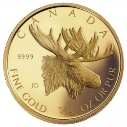 2004 Canada 1/25 oz Pure Gold 50 Cent Coin - Moose
