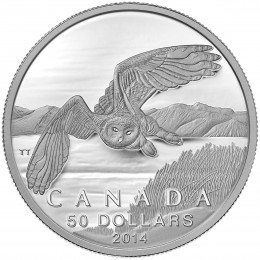 2014 Canadian $50 for $50 Snowy Owl Fine Silver Coin
