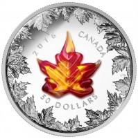 2016 Fine Silver 50 Dollar Coin - Murano Maple Leaf: Autumn Radiance