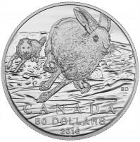 2016 Fine Silver 50 Dollar Coin - Hare