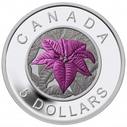 2014 Canadian $5 Flowers in Canada: Poinsettia Fine Silver Niobium Coloured Coin