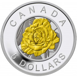 2014 Canadian $5 Flowers in Canada: Rose Fine Silver Niobium Coloured Coin