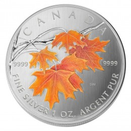 2007 Canadian $5 Coloured Silver Maple Leaf: Sugar Maple in Orange 1 oz Fine Silver Coin