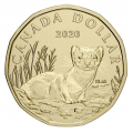 2020 Canadian Specimen 6-Coin Collector Set ft $1 Black-Footed Ferret Loonie Dollar
