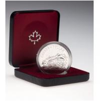 1980 Specimen Silver Dollar - Arctic Territories Centennial